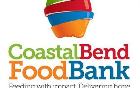 Volunteer Opportunities in the Coastal Bend