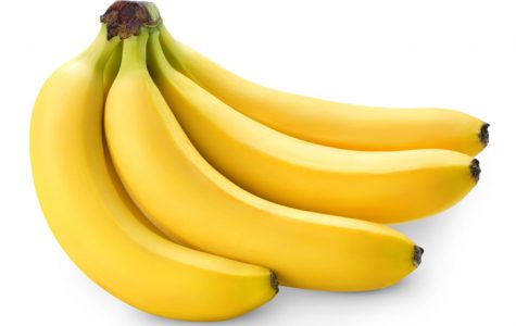 The Realities of Banana Farming