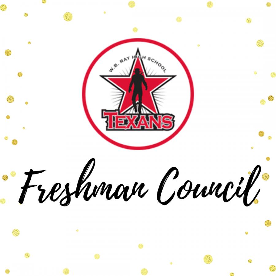 Freshman Council